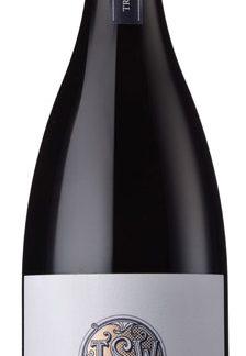 Trizanne Signature Wines - Darling Barbera Darling 2017 6x 75cl Bottles